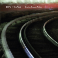 waving through motion, david friedman