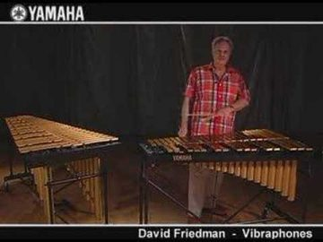 David Friedman Yamaha Vibe Demo